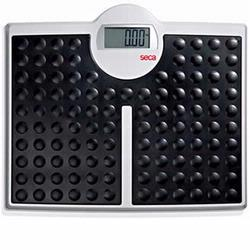 Seca 813 Robusta High Capacity Digital Floor Scale, 440 x 0.2 lb
