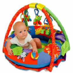 Jollybaby Propn Play Discovery Gym & Playmat Picture