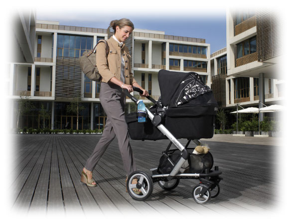 Stroller With Car Seat Skate System