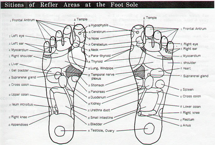 TK-101 Foot Massage Points